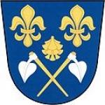 Obecní úřad Borovy – logo společnosti