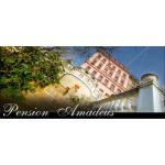 Mužíková Miroslava- PENZION AMADEUS – logo společnosti