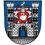 Městský úřad Bor – logo společnosti