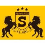 STEIN, Sport, Fit & Fun s.r.o. - hotel Stein – logo společnosti