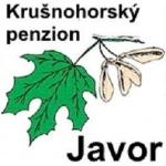 Krušnohorský penzion Javor – logo společnosti