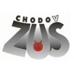 Základní umělecká škola Chodov, okres Sokolov, příspěvková organizace – logo společnosti