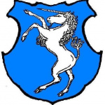 Město Žirovnice – logo společnosti