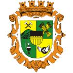 Městský úřad Chodov – logo společnosti