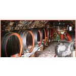 Vinný sklípek Břeclav – logo společnosti