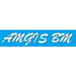 AMGIS BM spol. s r.o. – logo společnosti