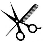 Zajíčková Štěpánka – logo společnosti