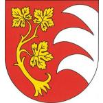 Obec Šlapanice – logo společnosti