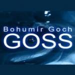 Goch Bohumír - GOSS- montáž a servis klimatizace – logo společnosti