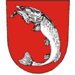 Městský úřad Dolní Benešov – logo společnosti