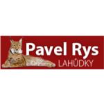 Pavel Rys – logo společnosti