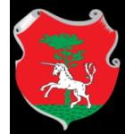 Město Vamberk – logo společnosti