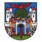 Městský úřad Hostinné – logo společnosti