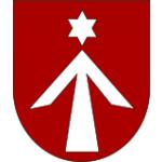 Městský úřad Javorník – logo společnosti