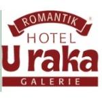 Hotel U Raka Romantik – logo společnosti