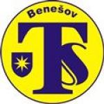 Technické služby Benešov,s r.o. – logo společnosti