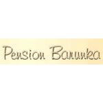 PENSION BARUNKA – logo společnosti