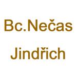 Nečas Jindřich, Bc. - Cestovní agentůra – logo společnosti