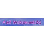 REGRESE ALEŠ WAKSMUNDSKÝ – logo společnosti