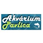 Pavlica Květoslav - AKVÁRIA PAVLICA – logo společnosti