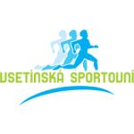 Vsetínská sportovní, s.r.o. – logo společnosti