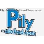 Ryšica Josef - Pily-obchod.com – logo společnosti