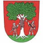 Městský úřad Rokytnice v Orlických horách – logo společnosti