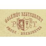 Golem Enterprises s.r.o. – logo společnosti