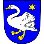 Městský úřad Broumov – logo společnosti