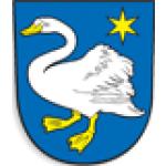 MĚSTO BROUMOV - městská policie (pobočka Broumov) – logo společnosti