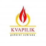 Kvapilíková Božena – logo společnosti