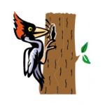 Šín Michal – logo společnosti