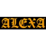 Skočíková Romana – logo společnosti