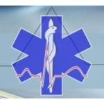Janovská Anna MUDr., soukromá gynekologická ordinace, s.r.o. – logo společnosti