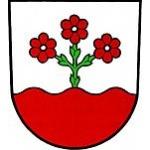 Obecní úřad Stará Červená Voda – logo společnosti