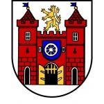 Statutární město LIBEREC – logo společnosti