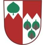 Obecní úřad Dřešín – logo společnosti