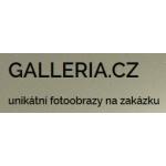 Zdeněk Morávek - Galleria.cz – logo společnosti