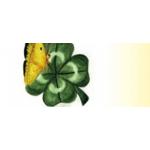AGENTURA MOTÝLEK – logo společnosti