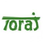 Truhlářství TORAJ s.r.o. – logo společnosti