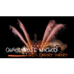 Fireworks service s.r.o. – logo společnosti