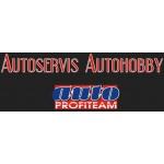 Lubomír Vokoun - AUTOHOBBY – logo společnosti