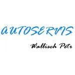 Wallisch Petr – logo společnosti