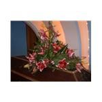 Pohřební služba Fridrich – logo společnosti