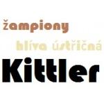 Kittler Zdeněk – logo společnosti