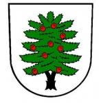 OBEC TIS – logo společnosti
