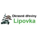 Doležalová Jitka - okrasné dřeviny – logo společnosti