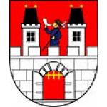 Městys Nový Rychnov – logo společnosti