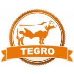 Tegro spol. s.r.o. – logo společnosti