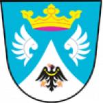 Obec Netín – logo společnosti